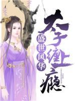 好看的十本小说赵婉兮冷君遨免费版在线阅读(盛世风华:太子缠上瘾)
